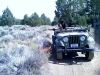 1965 CJ-5 U.S. Navy Fire Jeep