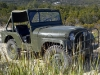 1953 Willys CJ5