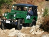 Willys Jeep CJ-3B