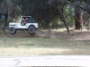 1946 Willys CJ-2A Jumping