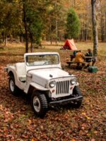 Todd Phelps' 1958 Willys CJ-3B